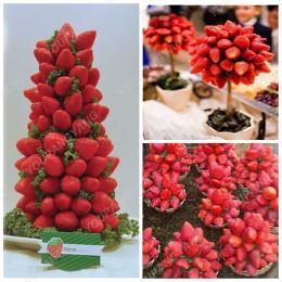 100 sztuk Truskawki Drzewa bonsai Pyszne Wieloletnia Truskawki bonsai Odkryty Dziedziniec Kryty Rośliny Bonsai DIY Home Ogród Ro