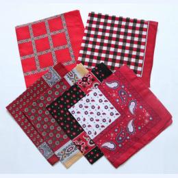 Red Paisley Bandany Plaid Cotton Mężczyźni Plac Kieszonkowy Panie Chusty Apaszka Kobiet Chusteczka SUJASANMY TJ9046