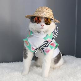 Cat Eye-nosić Okulary Dla Zwierząt Piesek Okulary Cat Okulary Zdjęcia Rekwizyty Akcesoria Pet Supplies Pet Dog cat produkty