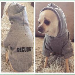 Bezpieczeństwo Pies Ubrania Klasyczne Pet Dog Bluzy Ubrania Dla Małych Psów Jesienią Płaszcz Kurtka dla Yorkie Chihuahua Puppy O
