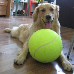 9.5 Cali Pies Piłka tenisowa Gigantyczne Zabawki dla Psa Do Żucia Dla Zwierząt zabawki Podpis Mega Jumbo Dzieci Zabawki Piłka Do