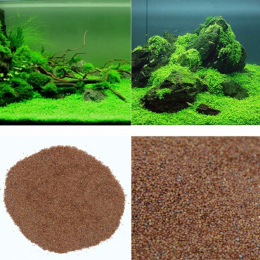 Nicrew Akwarium Glossostigma Hemianthus Callitrichoides Nasiona Wody Trawy Na Żywo Roślin Fish Tank Dekoracji Krajobraz Ornament
