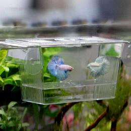 Akwarium Przejrzyste Podwójna Miska Walki Ryby Mini Dom Inkubator Box Dla Fry Izolacji Wylęgarnia Gad Klatka Żółw Dom