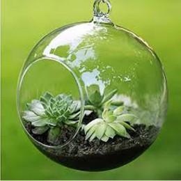 Terrarium Ball Globe kształt jasne szklana wisząca wazon kwiat rośliny Terrarium pojemnik Micro krajobraz DIY ślubny wystrój dom