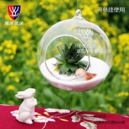 O. RoseLif marka szklana wisząca wazon Terrarium Ball Globe kształt mikro element dekoracji krajobrazu DIY kontener mieszkalny d