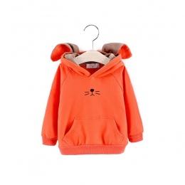 Nowy jesień dzieci odzież chłopcy dziewczyny znosić dzieci wiosna swetry pełna rękawem Unisex Bluzy